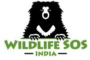 Logo de Wildlife SOS India