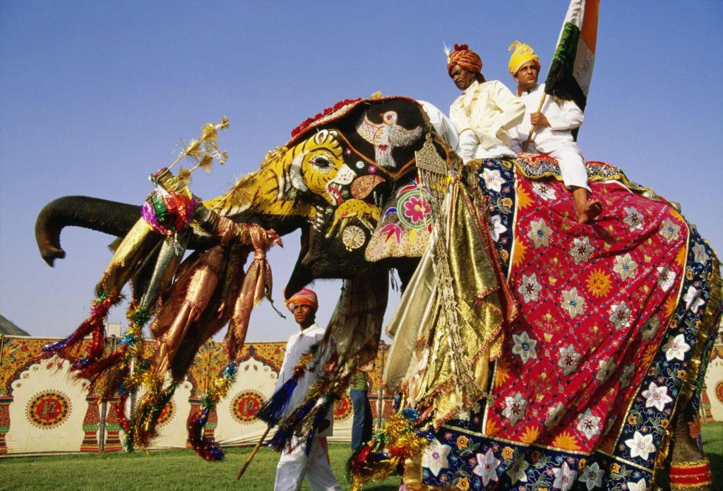 Elephant Jaipur Festival