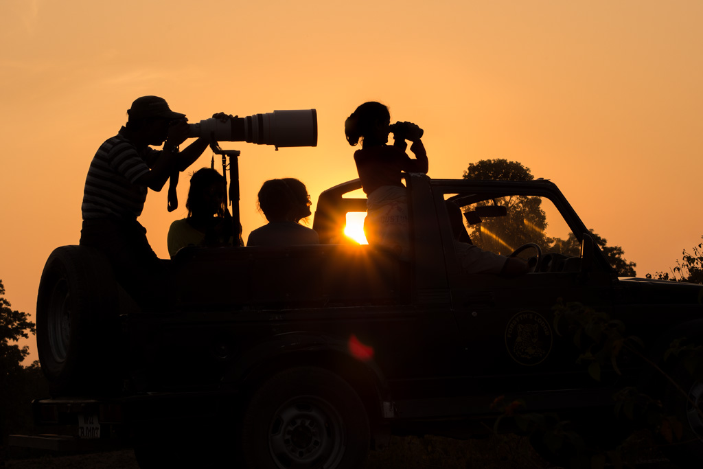 Travelers during a sunrise safari