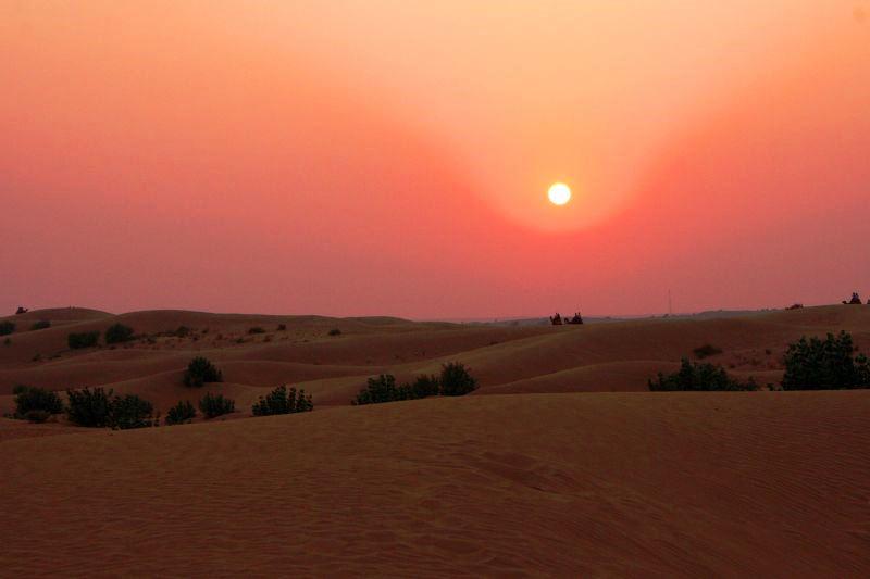 Desert of the Thar during monsoon