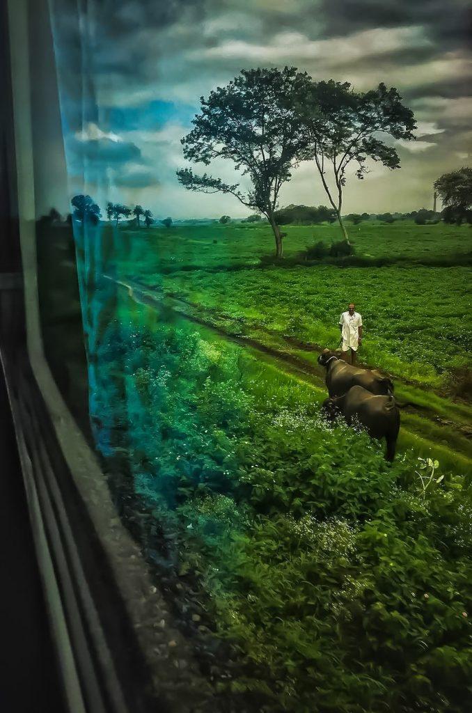 Vista del estado de Andhra Pradesh desde un tren indio.