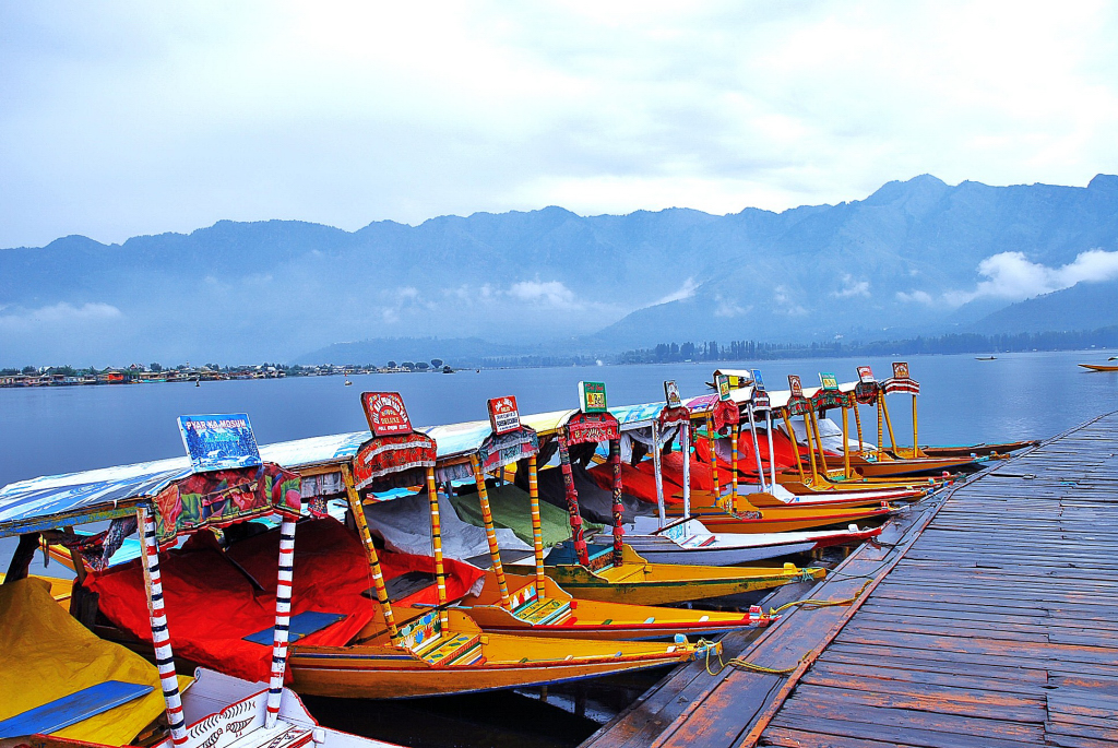 Srinagar - Shikara in Dal Lake