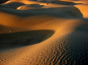 Parques naturales de India. Thar Desert