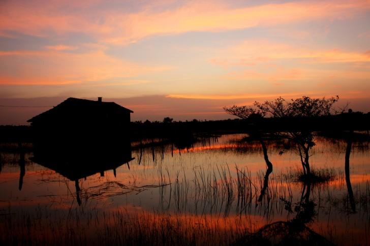 Viajar a Sri Lanka: Kumburumoolai