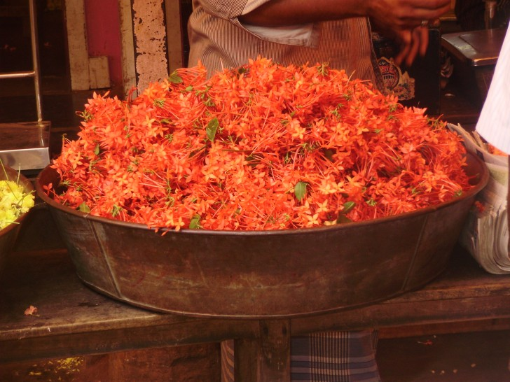 Siete mercados en India con encanto que no debes perderte
