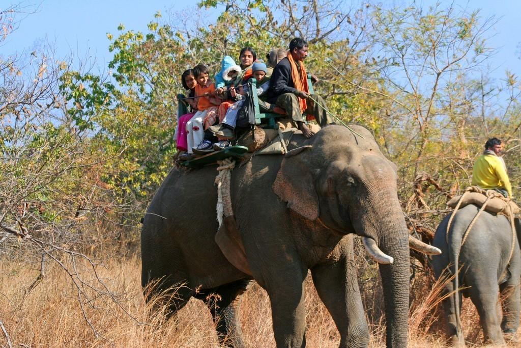 Panna India  city images : Panna c incredible india1 1024x683