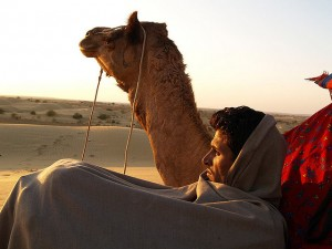 Travel to Jaisalmer