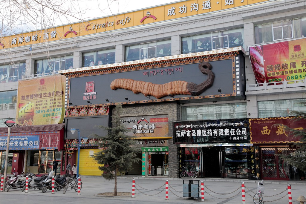 Yarsagumba store en China