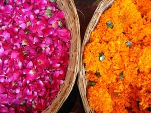 Declare in India - Flowers