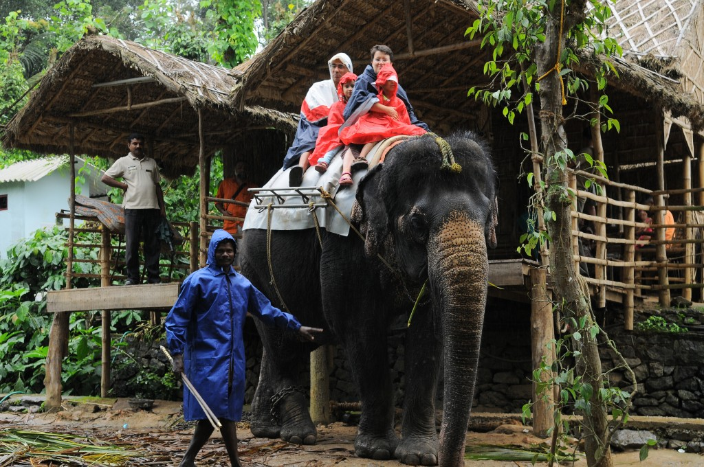 Kerala as a family - Elephant Safari in Idduki
