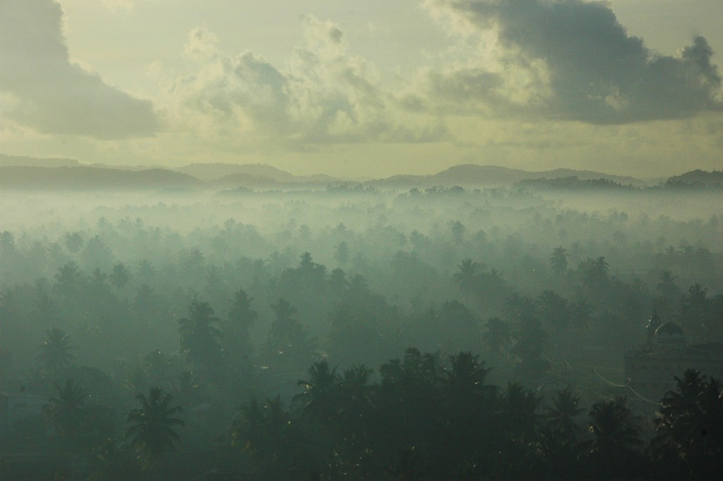 Viaje con encanto - Sri Lanka