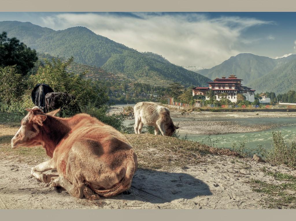 Ecoturismo en Butan