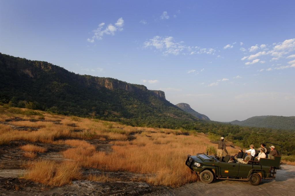 Safari con niños - Bandavgarh