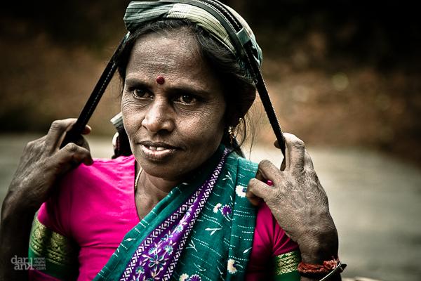 Viajar a Sri Lanka en Semana Santa. Mujer recolectora de té