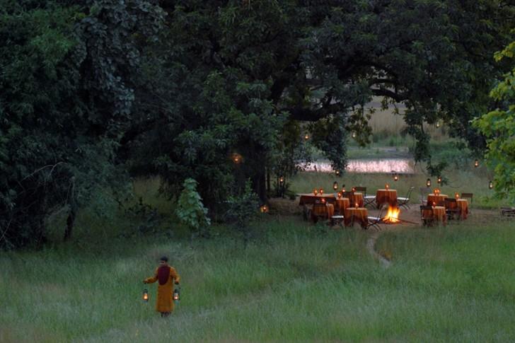 Viaje a la selva - Cena nocturna
