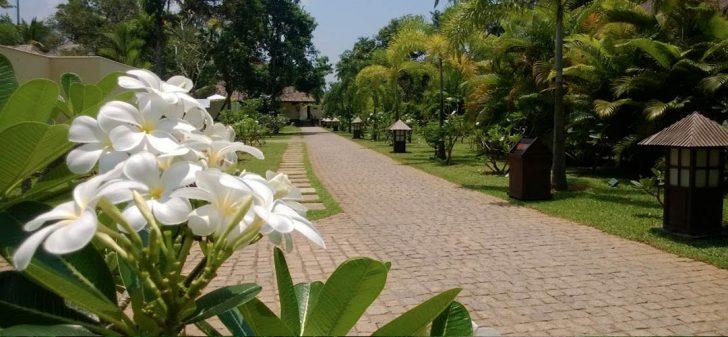 Hoteles ecológicos en India - Carnoustie Ayurveda _ Wellness Resort PORTADA