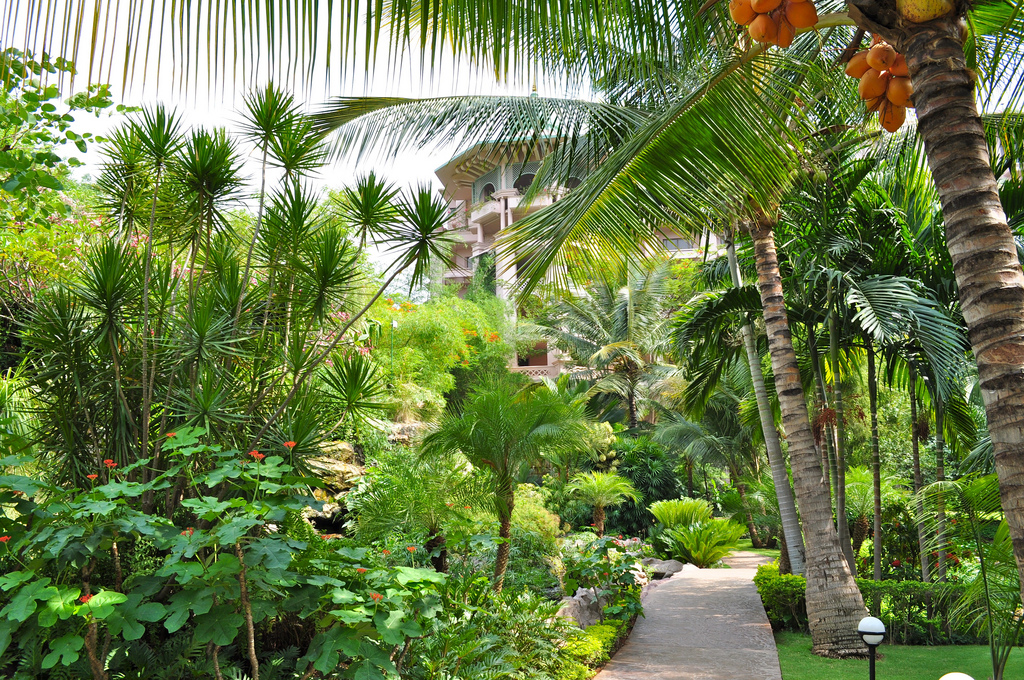 Botanical Gardens of India - Bangalore Garden