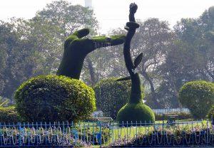 Botanical Gardens of India - Kolkata Garden