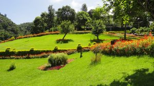 Botanical Gardens of India - Ooty Garden