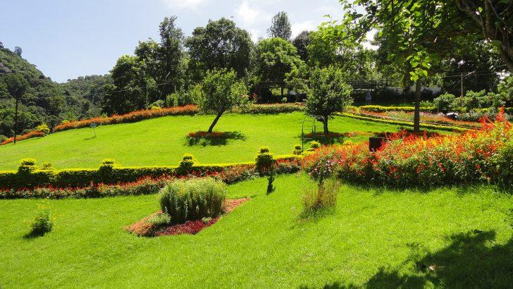 Jardines botánicos de la India - Ooty Garden