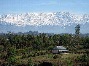 Qué hacer en Dharamsala