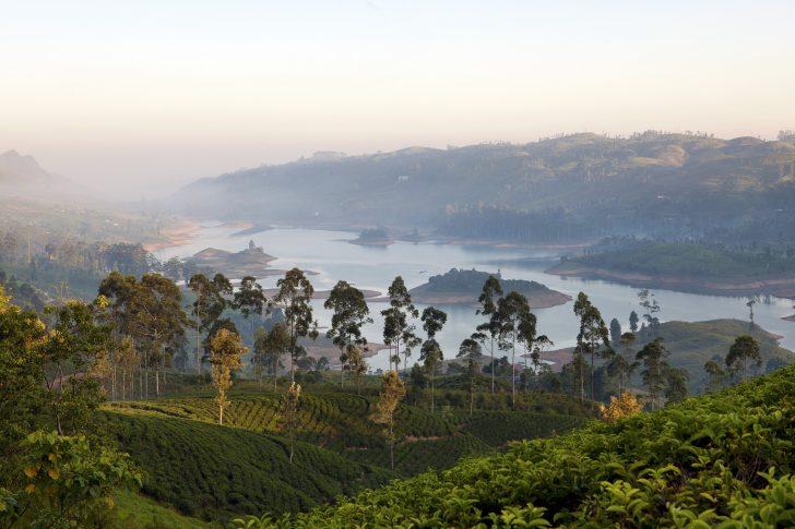 Top 5 experiencias en Sri Lanka