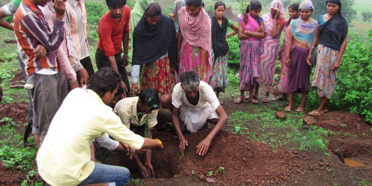 Visitar una ONG en India. Plantación de árboles en Sitamala, Rajastán