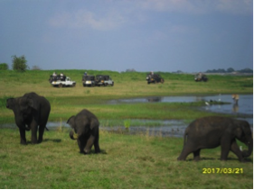 Parque Nacional de Kaurula