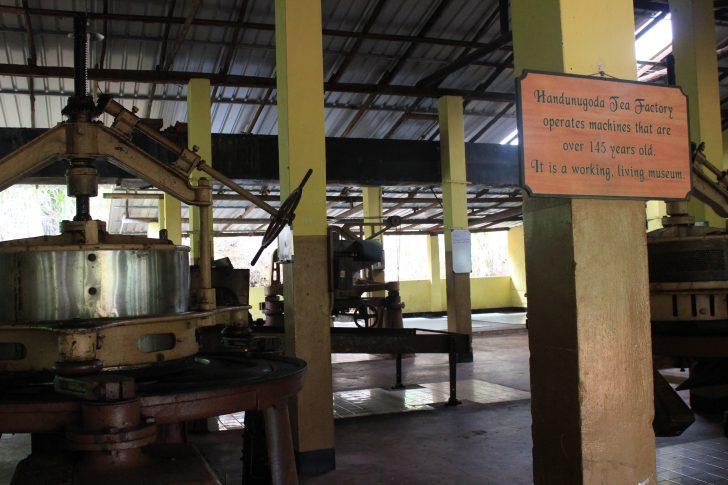 Fábrica de té