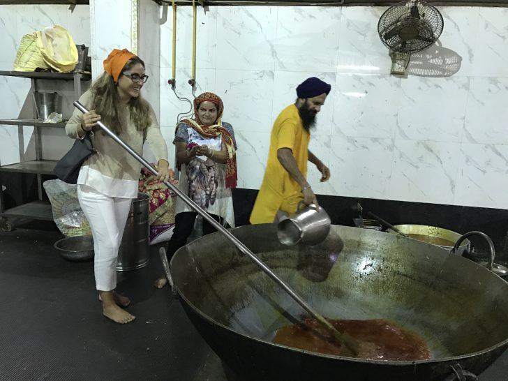 Viajar a India en familia