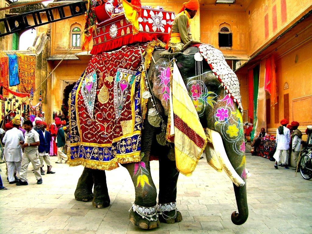Elefante ornamentado India