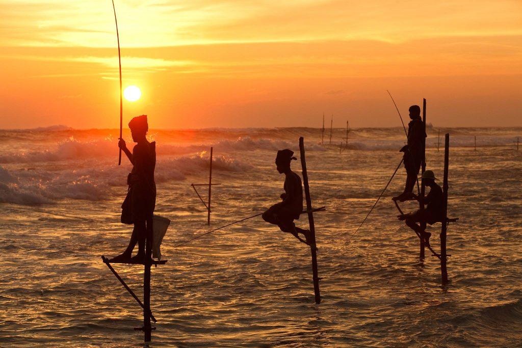 Que ver en Sri Lanka : pescadores zancudos