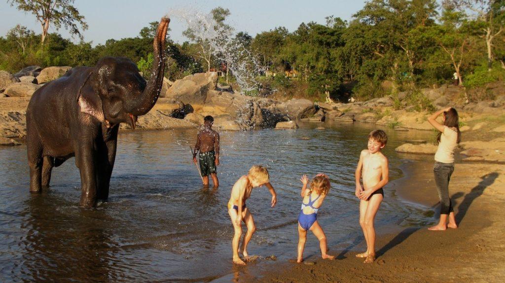 La elefanta Tara es la gran protagonista del Kipling Camp