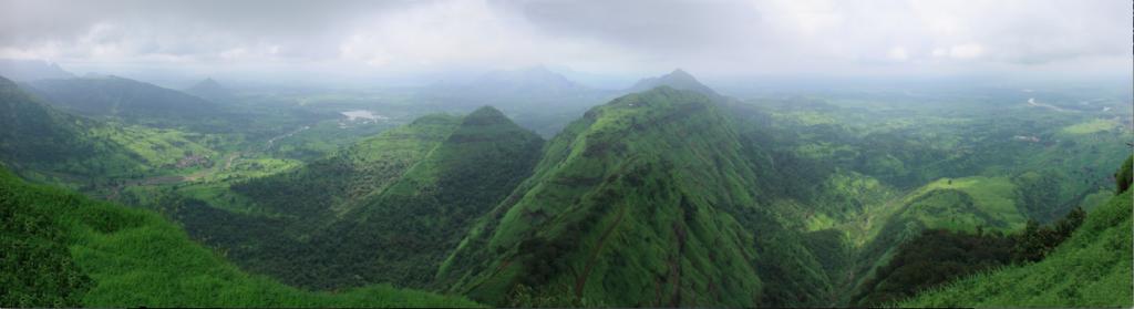 La vegetación de los Ghats es más verde