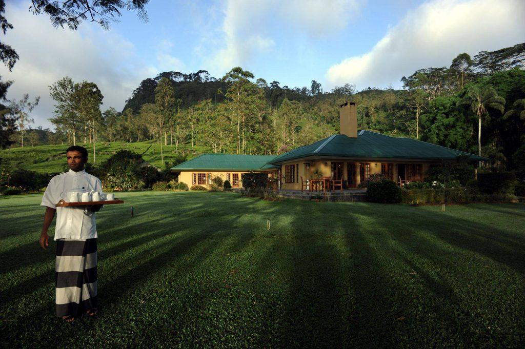 Degustación de té en las plantaciones de Ceylon Tea Trails.