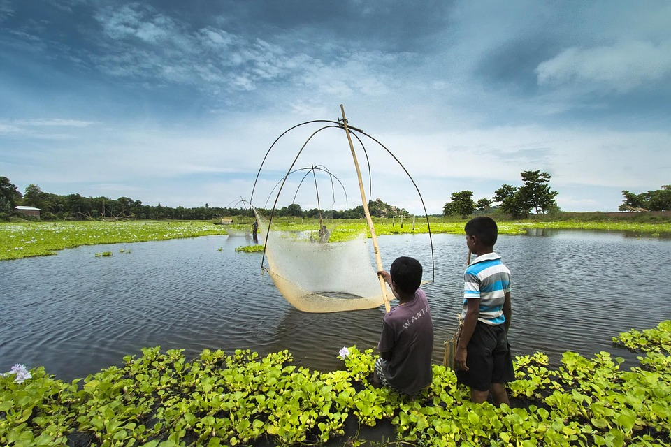 Children stretch nets on a lake in Assam in India
