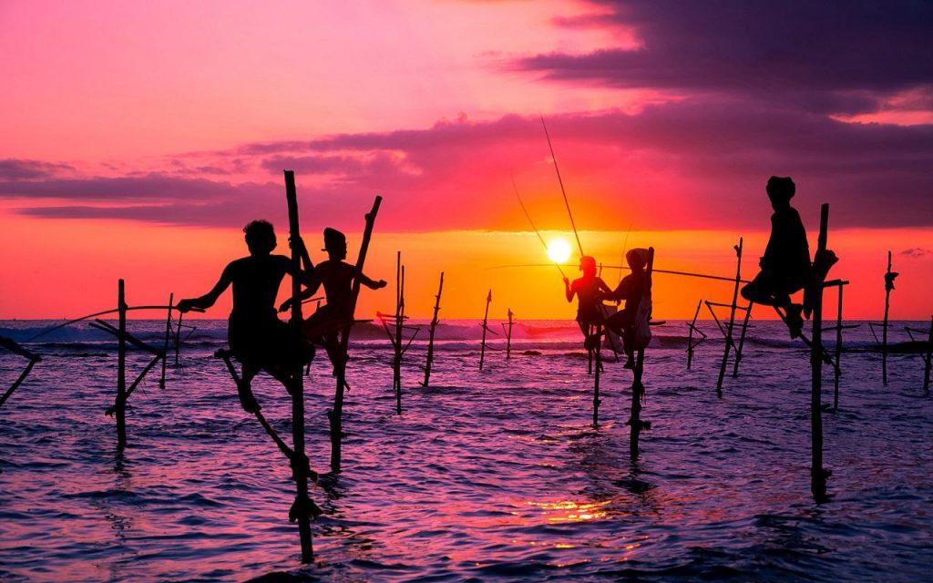 Pescadores zancudos junto al atardecer en Sri Lanka