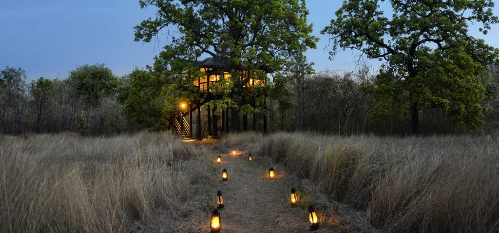 Tree Lodge, modalidad de Pugdundee Safaris en Pench.