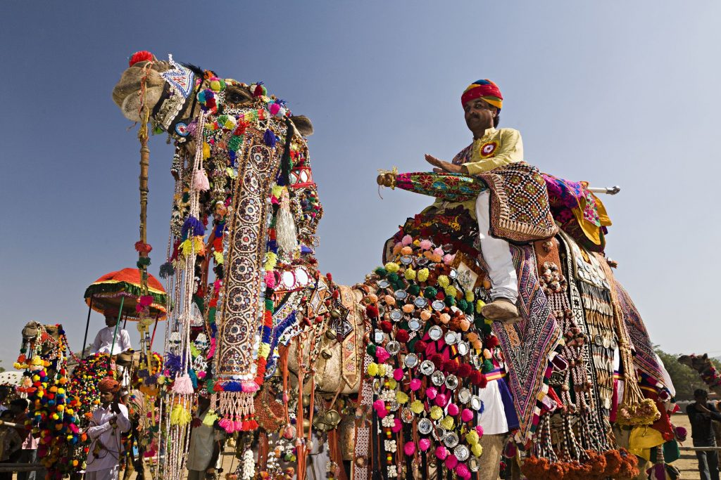 Camello de colores durante la Feria de Camellos de Pushkar
