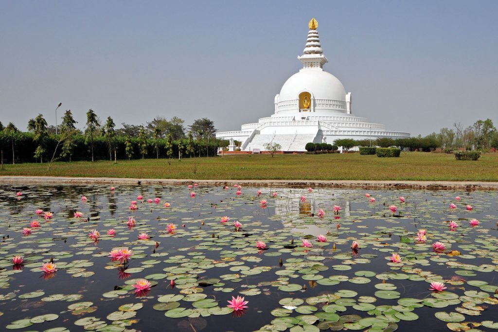 Pagoda de la Paz de Lumbini junto a un estanque de lotos