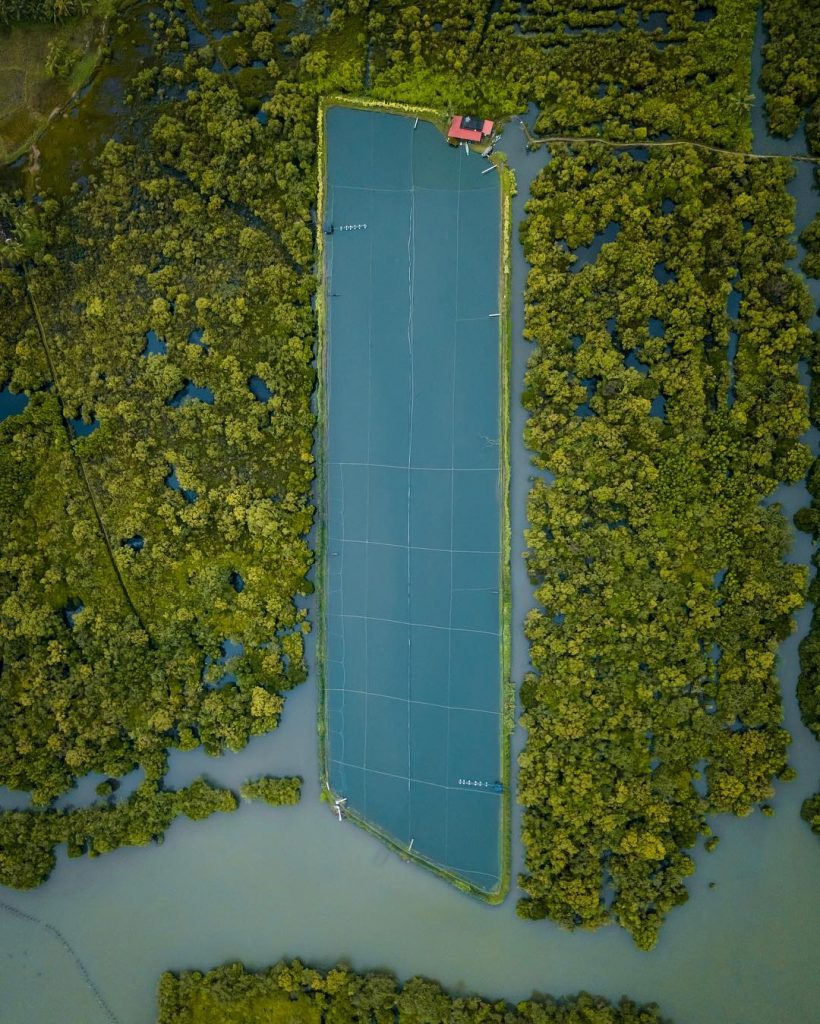 Kerala shrimp farm photographed from a drone