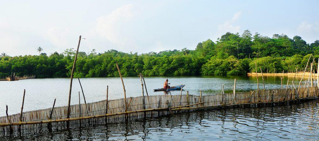 Estuario de Maru River en Sri Lanka