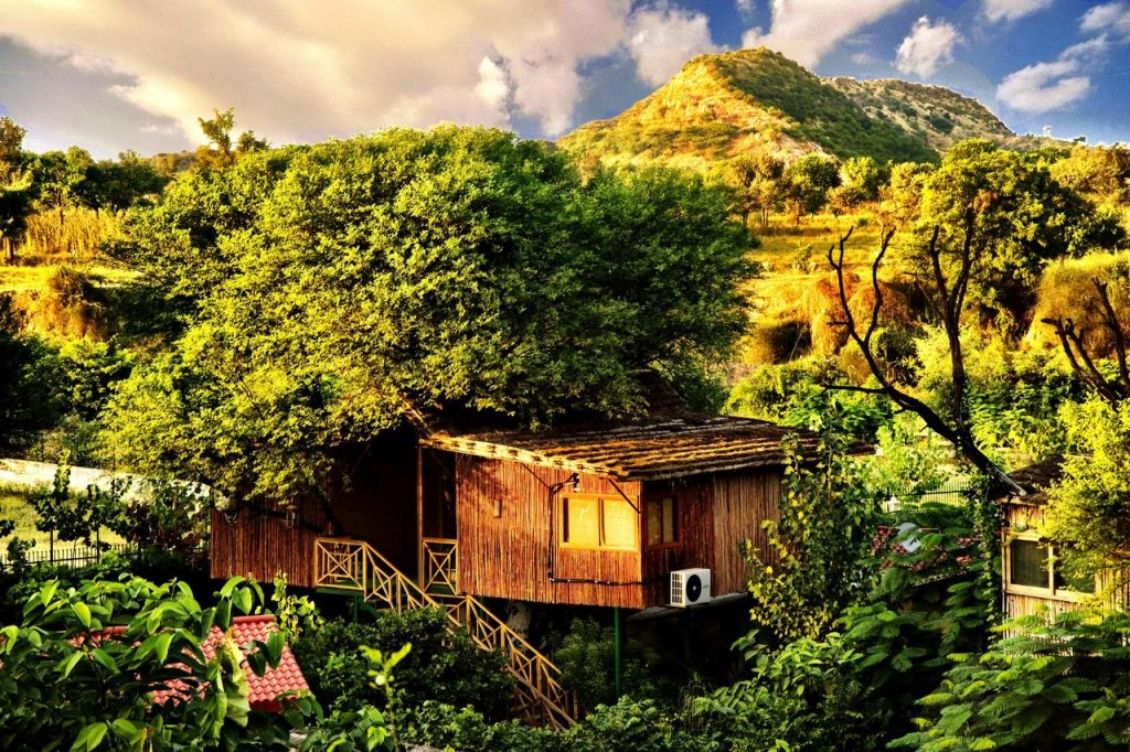 Treehouse hotel in Jaipur