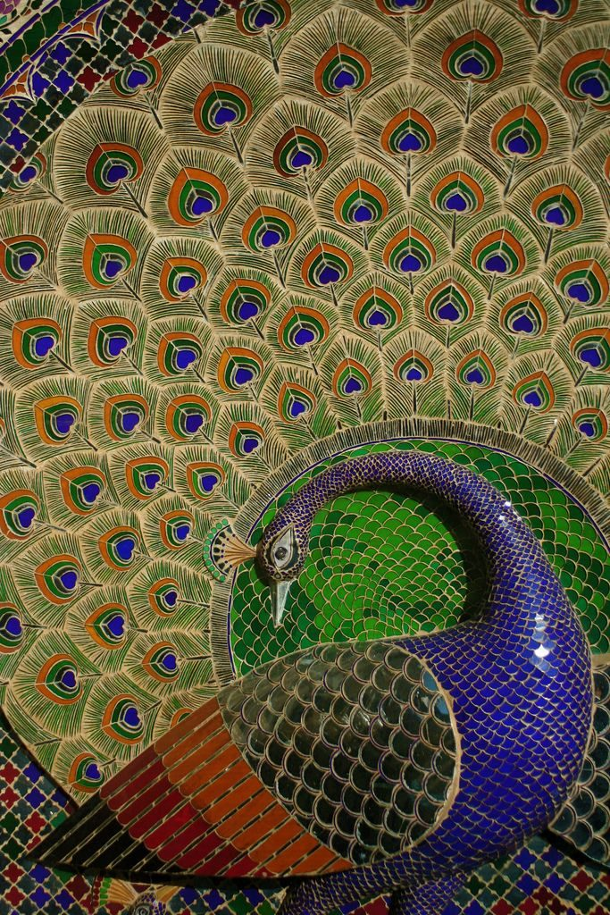 Peacock ecuador in the City Palace of Udaipur