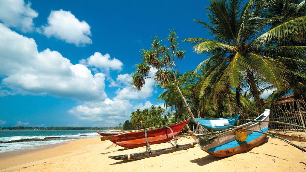 Barcas de colores bajo cocoteros en una playa de Sri Lanka