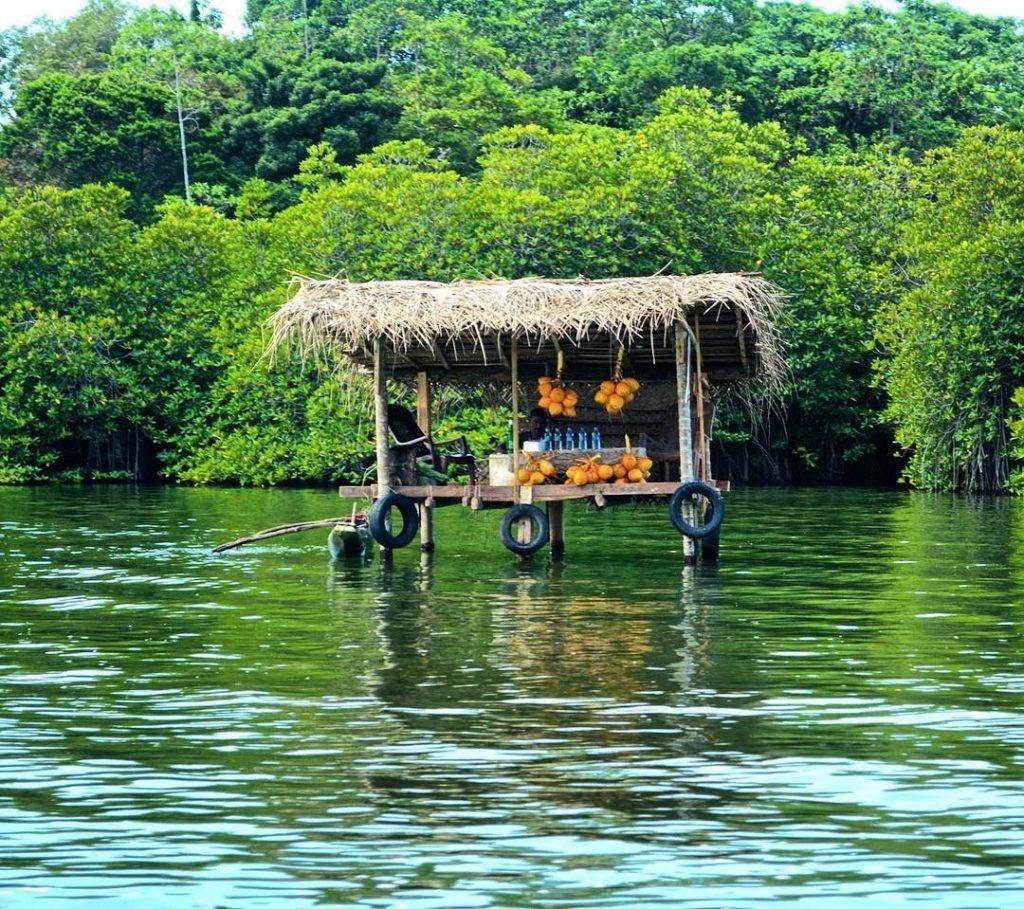 Manglares del río Madu en Sri Lanka