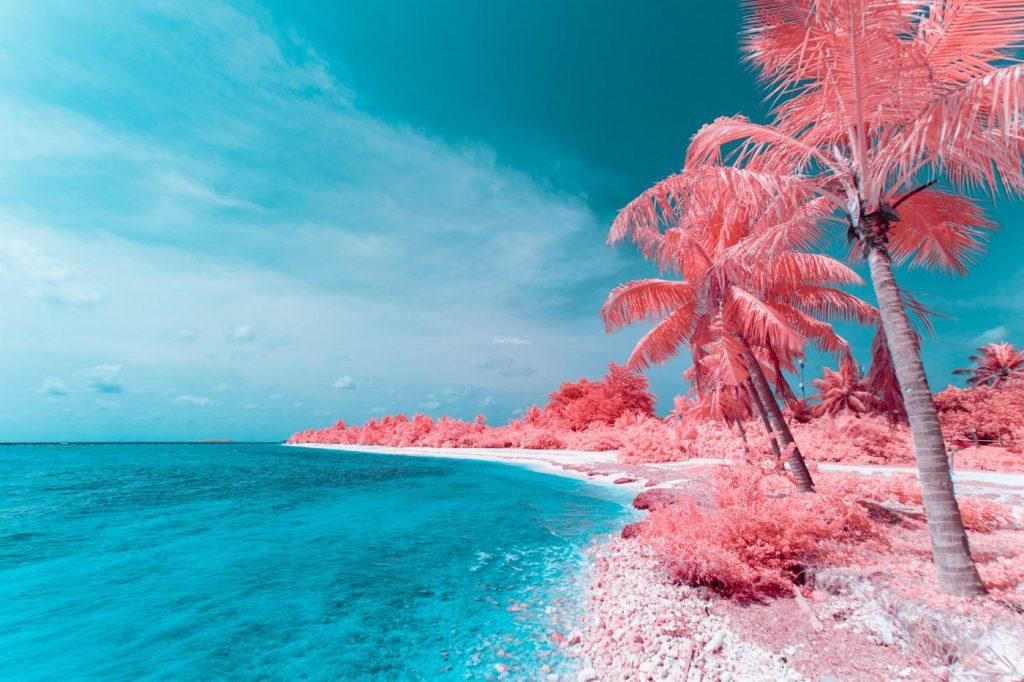 El proyecto Infrared de Paolo Pettigiani