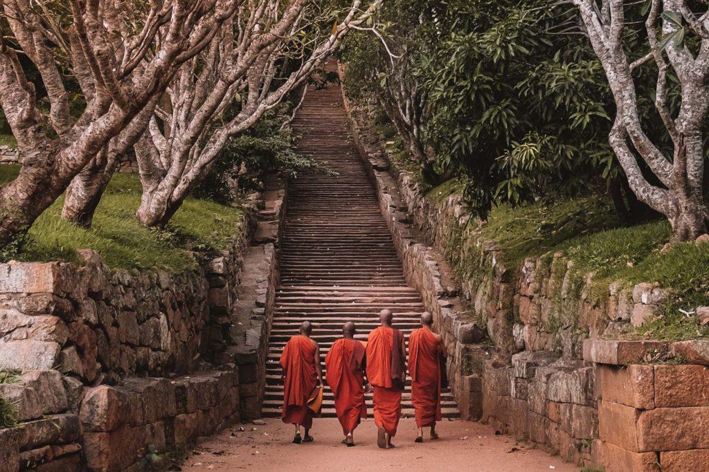 Qué hacer en Sri Lanka