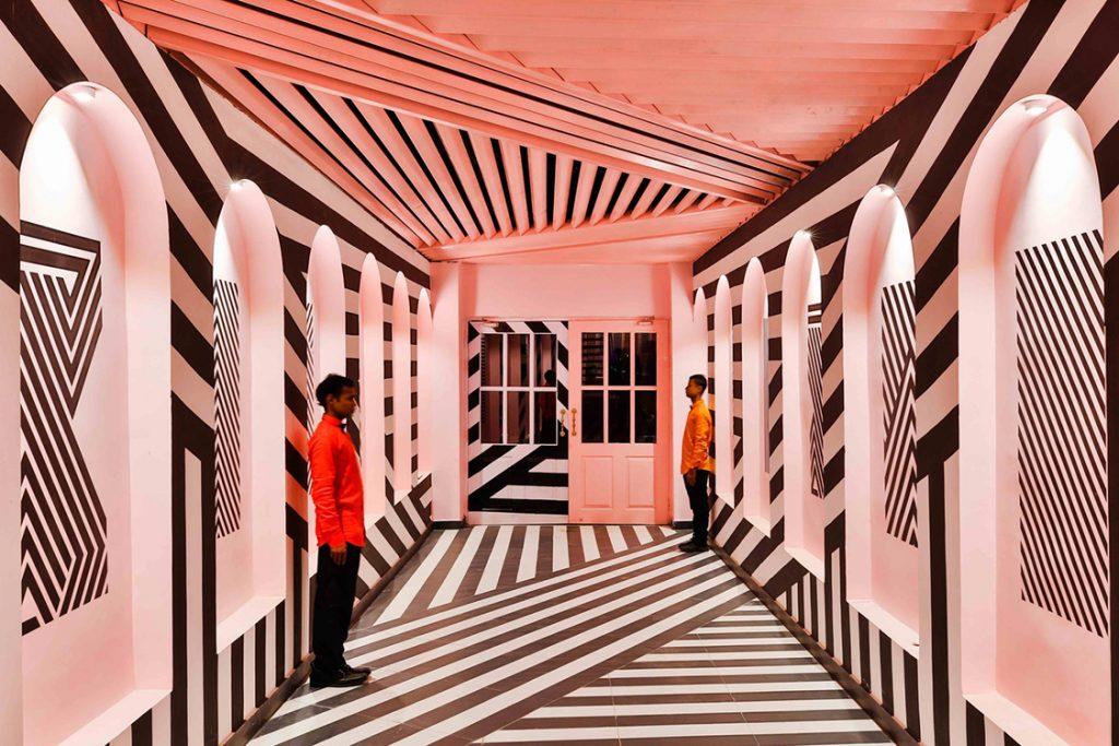 Pink Zebra en Kanpur