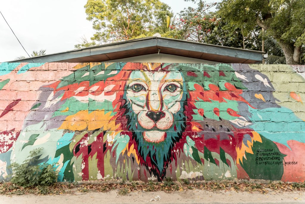 Street art de Mirissa